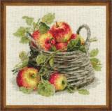 Riolis 1450 - Ripe Apples